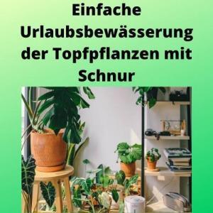 Einfache Urlaubsbewässerung der Topfpflanzen mit Schnur